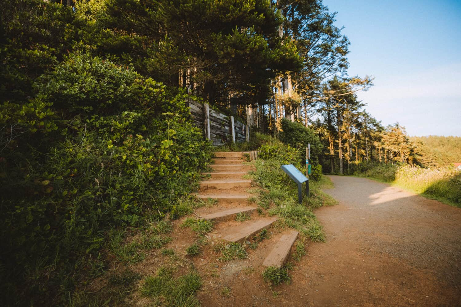Stairs up to trails around Heceta Head Scenic Viewpoint