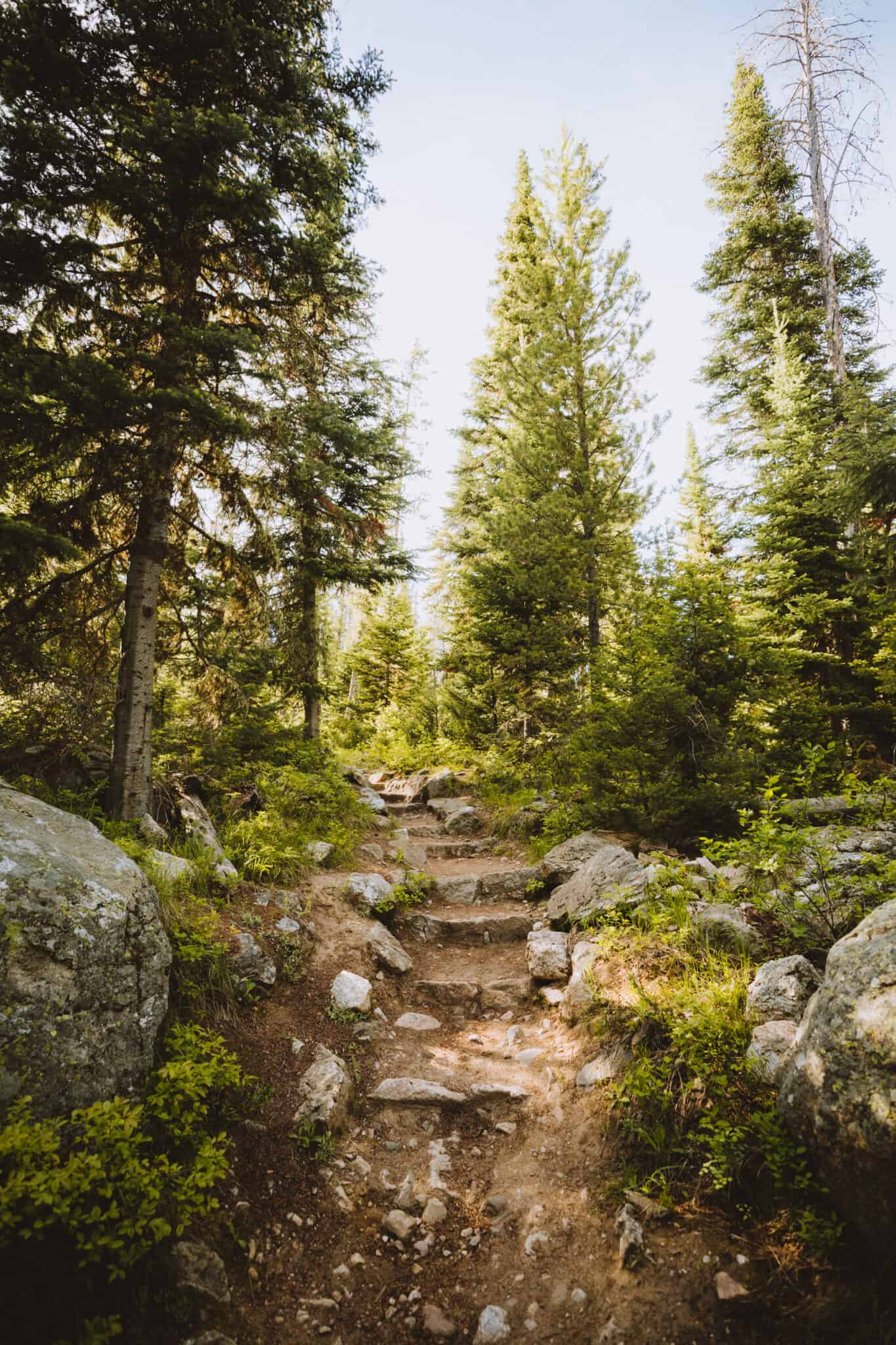 String Lake Trail - rock steps -Berty walking on String Lake Trail -TheMandagies.com