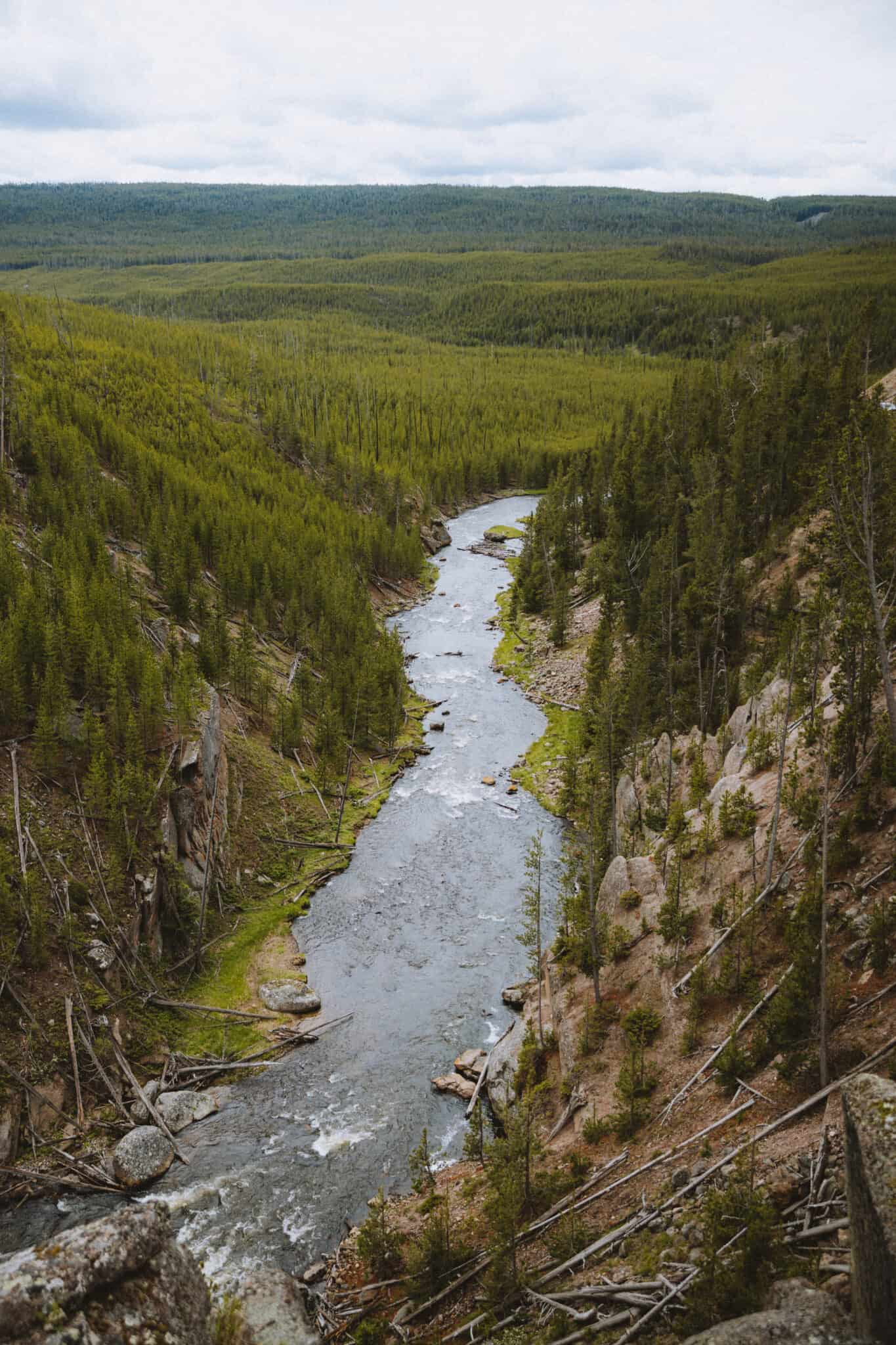 Gibbon River in Yellowstone National Park