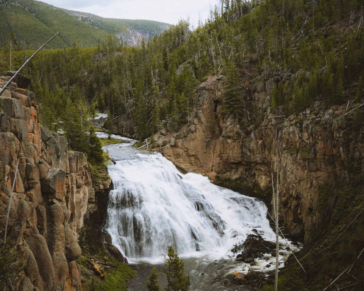 Gibbon Falls in Yellowstone - TheMandagies.com