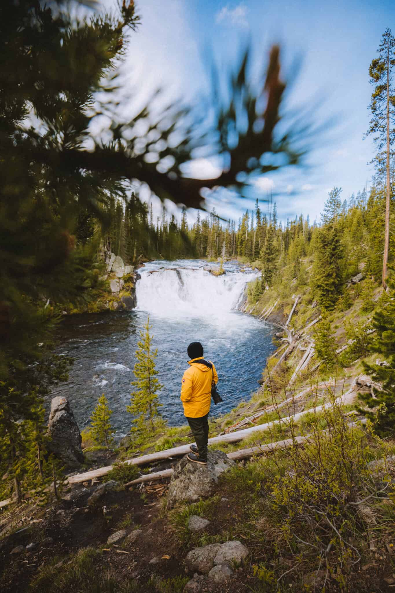 Berty standing at Lewis Falls in Yellowstone National Park