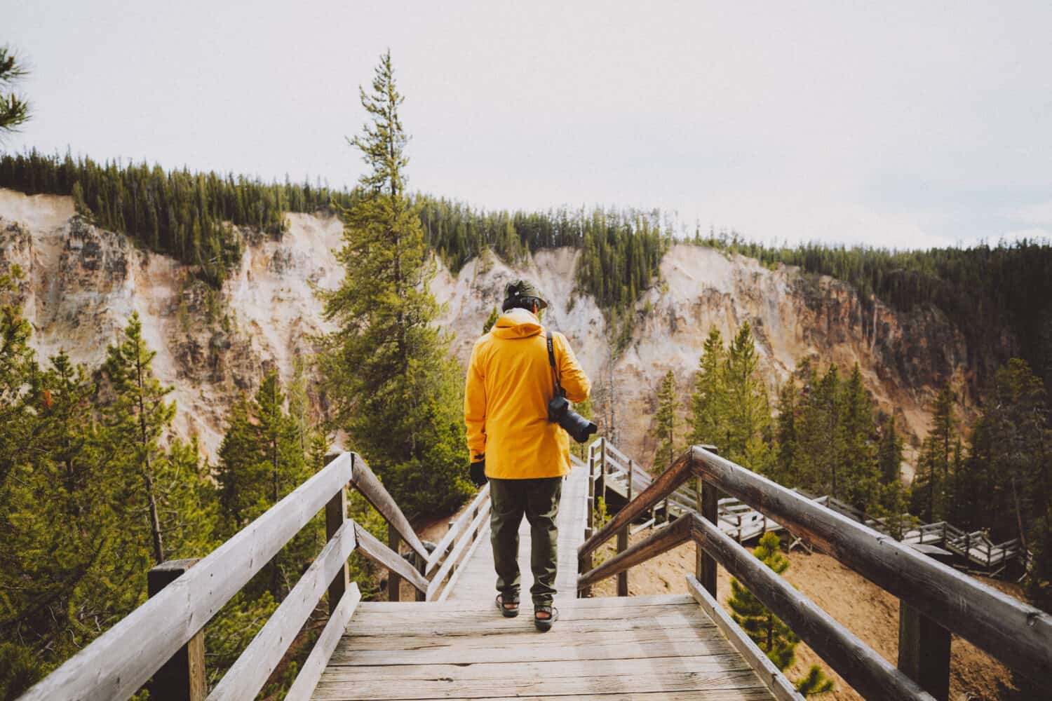 Things To Do In Yellowstone - Discover Viewpoints of Yellowstone Canyon