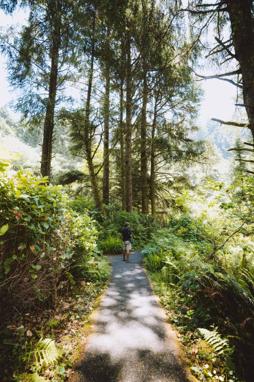 Cape Perpetua Hiking