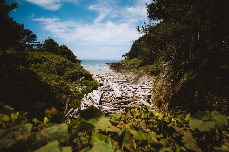Cape Cove in Cape Perpetua Scenic Area -TheMandagies.com