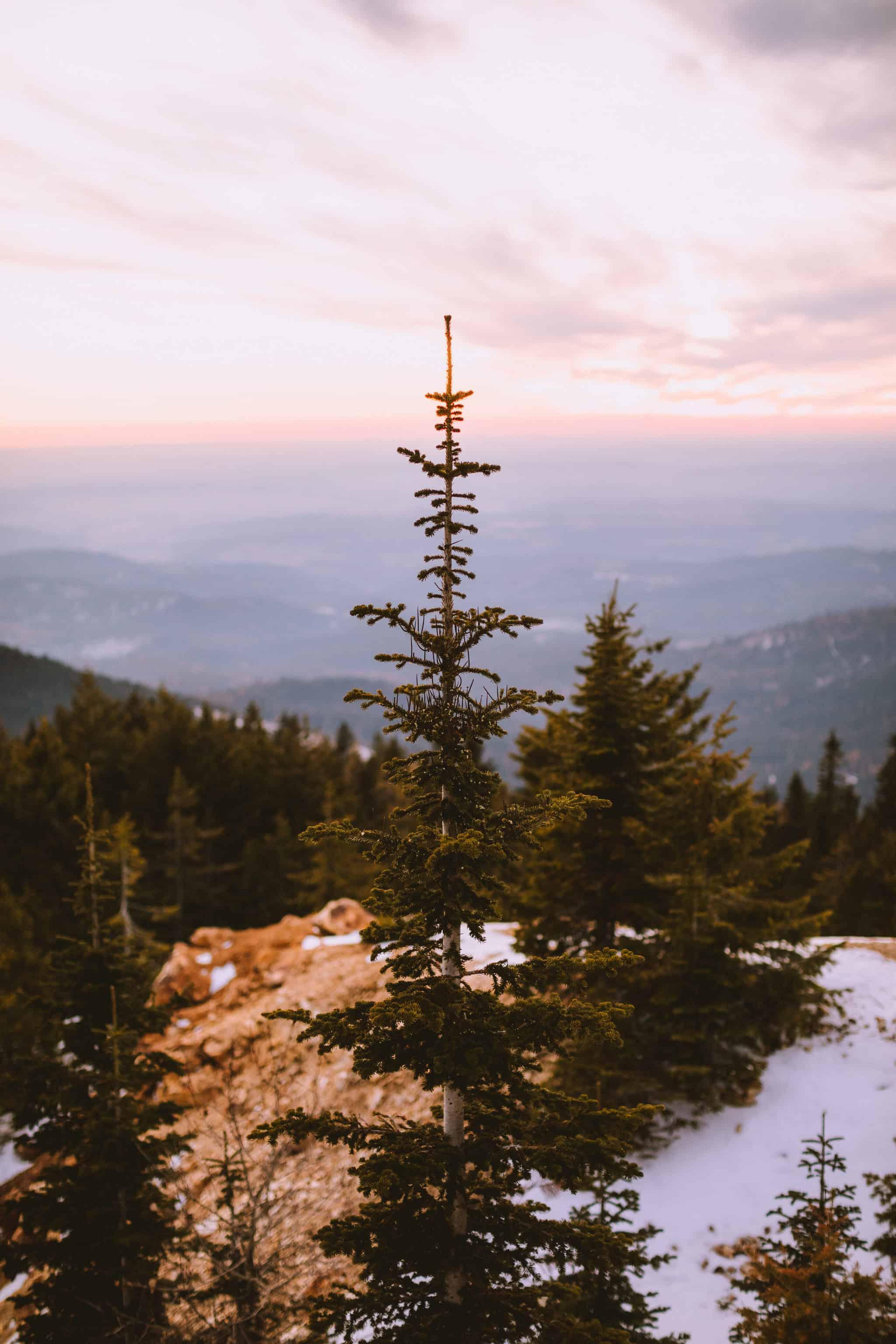 Sunset at Quartz Mountain Lookout