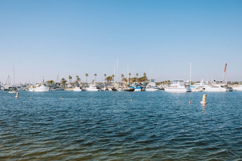 Paddle Boarding at Newport Beach Pier - TheMandagies.com