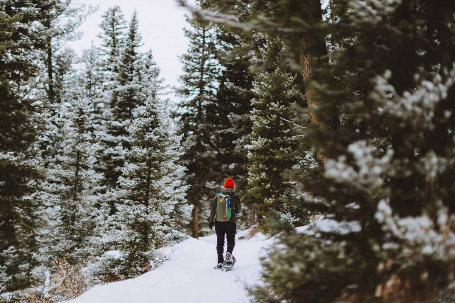 Winter Activities in Bozeman, Montana - snowshoeing - TheMandagies.com