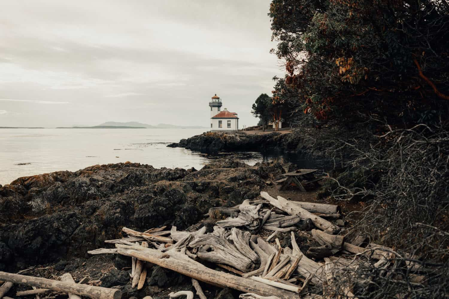 Best Things To Do In Washington State - Visit San Juan Islands Lime Kiln State Park - TheMandagies.com