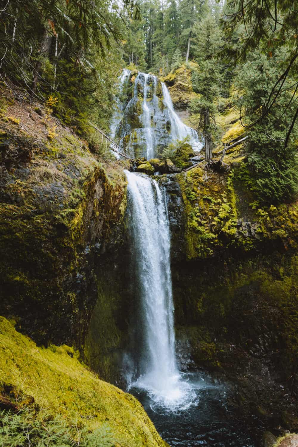 Falls Creek Falls, Washington State, Columbia River Gorge - TheMandagies.com
