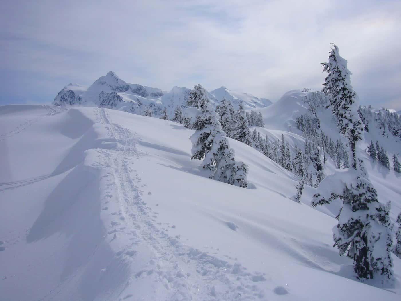 Washington Winter Hikes - Artist Point to Huntoon Point