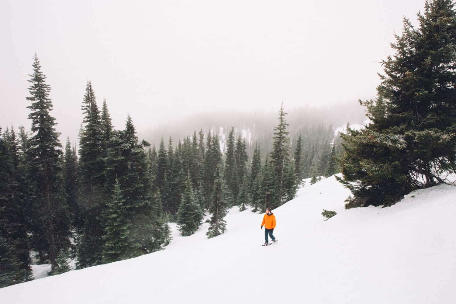 Joseph Roberts hiking Hurricane Ridge Trail - Washington Winter Hikes in Olympic National Park - TheMandagies.com