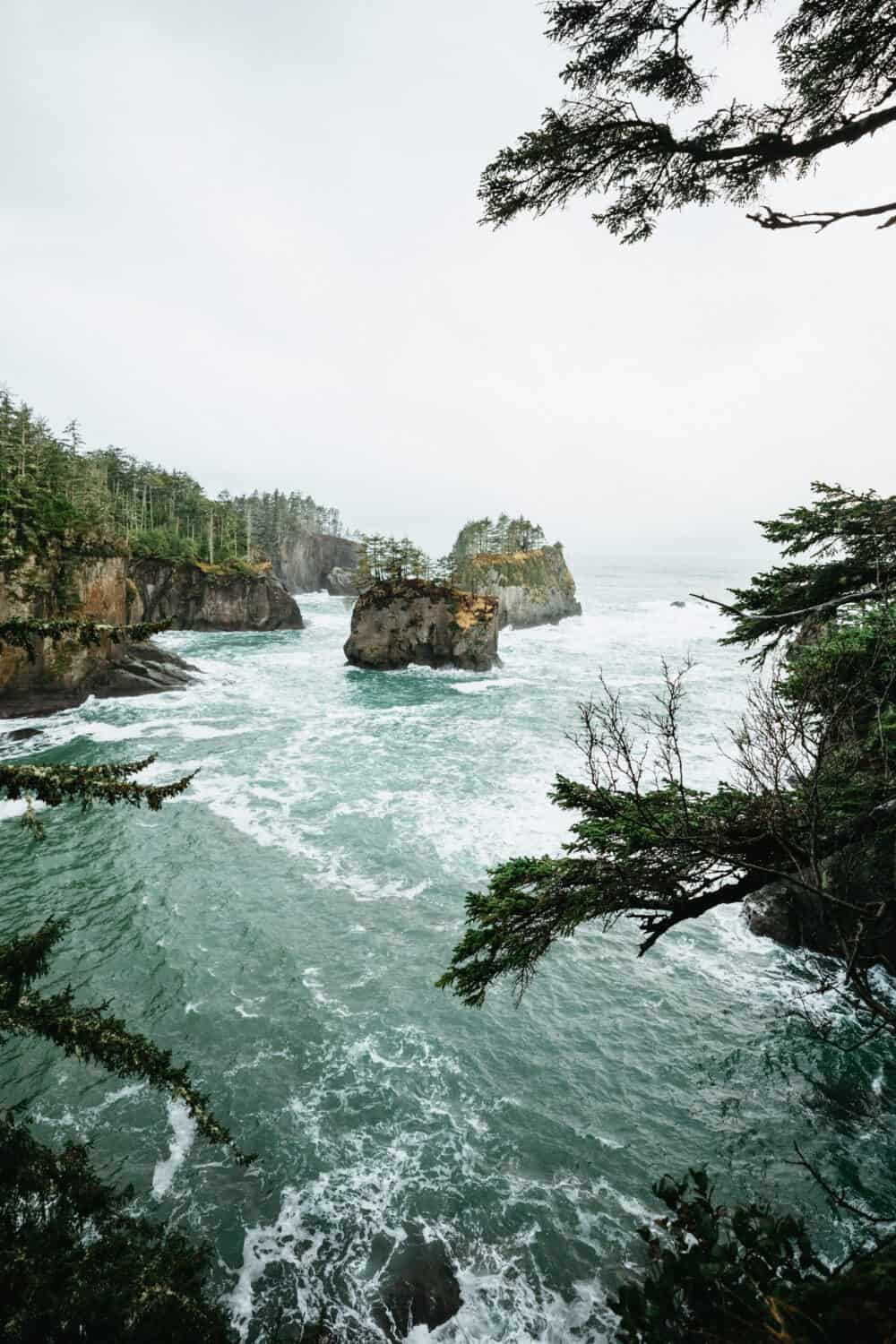 View of Sea stacks from Cape Flattery, Washington