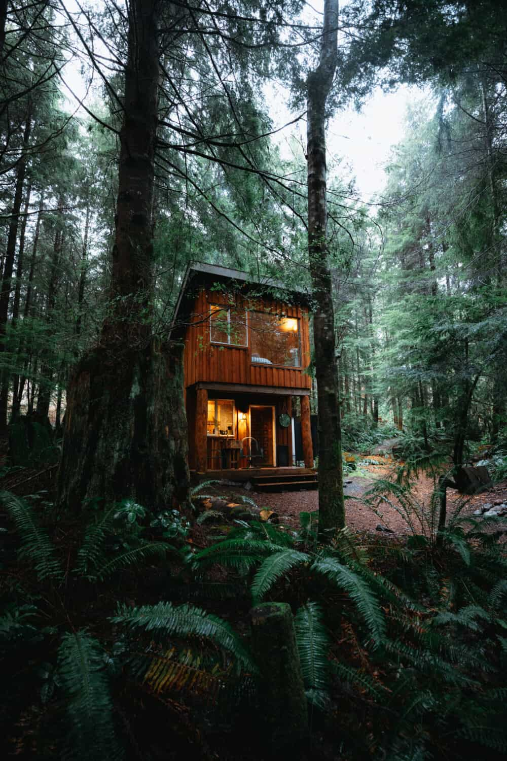 Pacific Northwest Cabins - Fern Gully - Vancouver Island