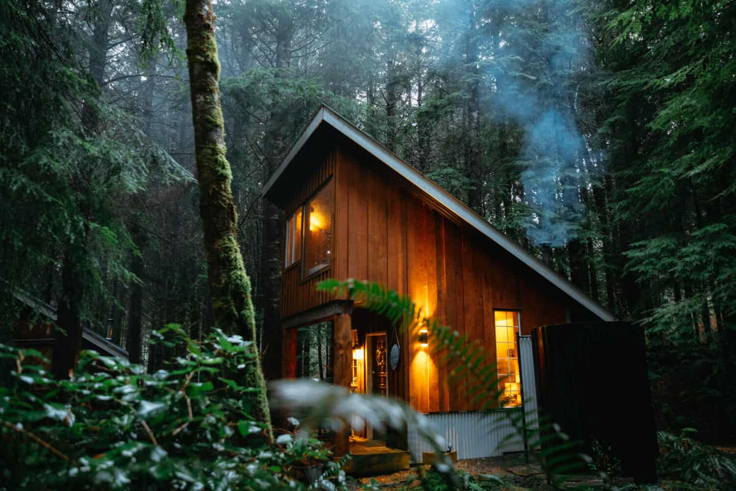 Fern Gully Cabins in Port Renfrew, Vancouver Island