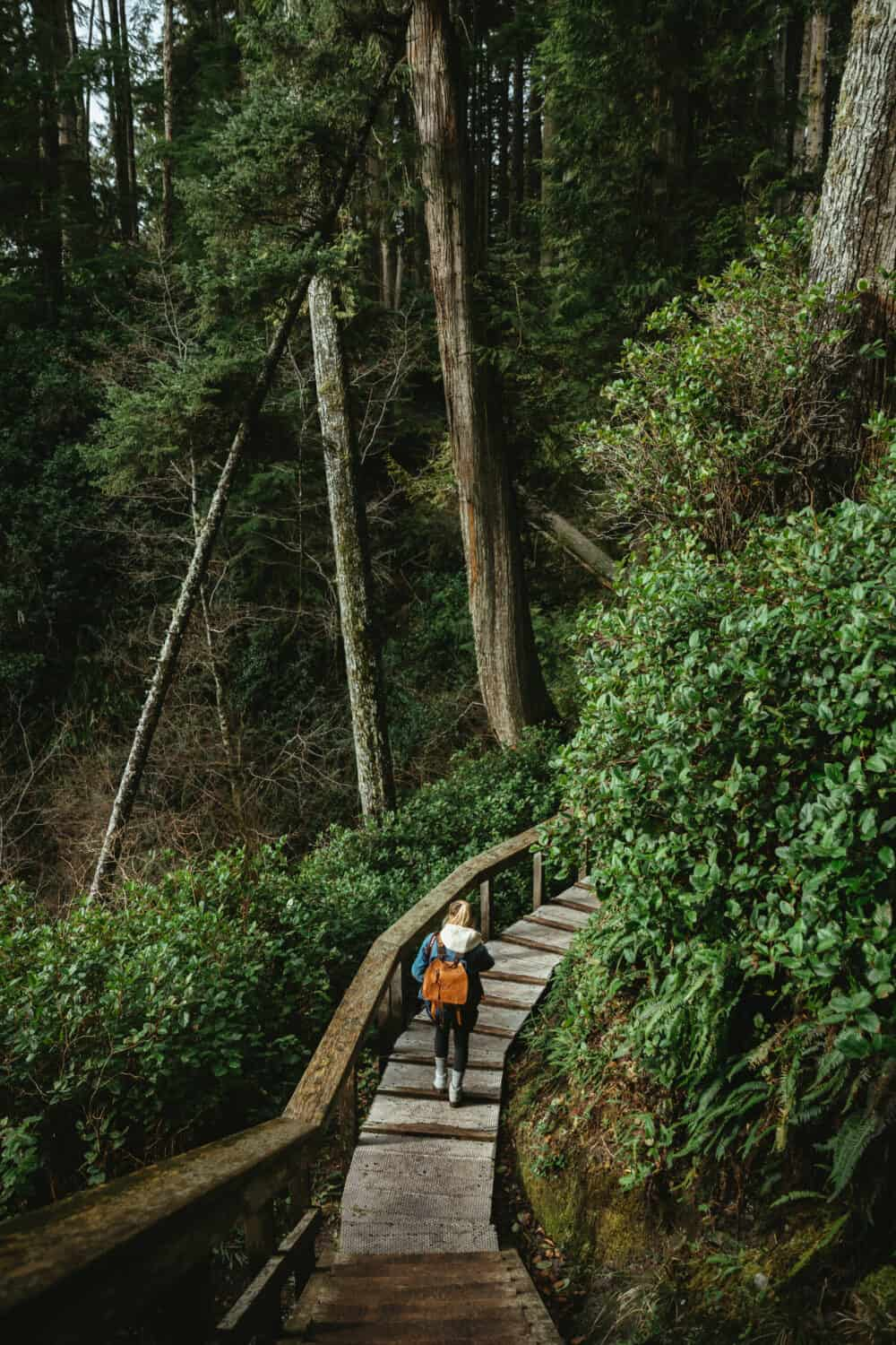 Hiking Trails in Port Renfrew, British Columbia - TheMandagies.com