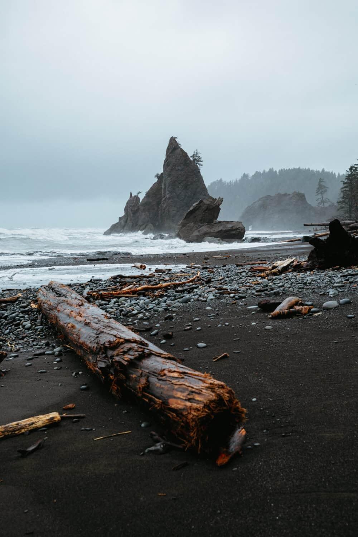 Driftwood logs on Rialto Beach on the Washington Coast - TheMandagies.com