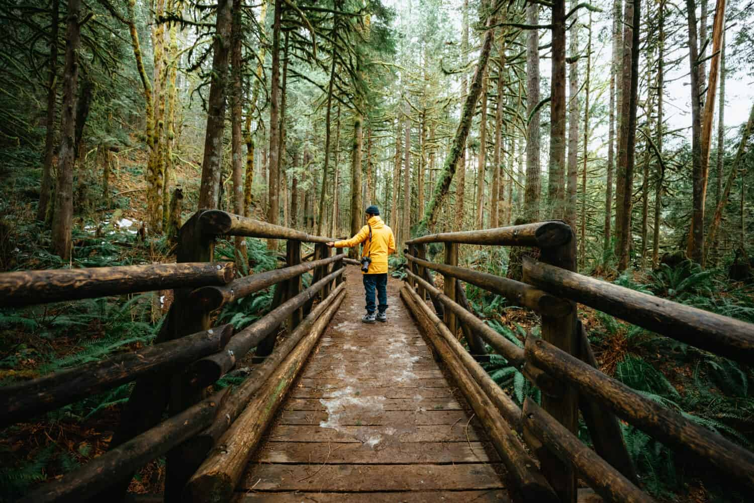 Berty Mandagie standing on wooden bridge - Wallace Falls Hike - TheMandagies.com