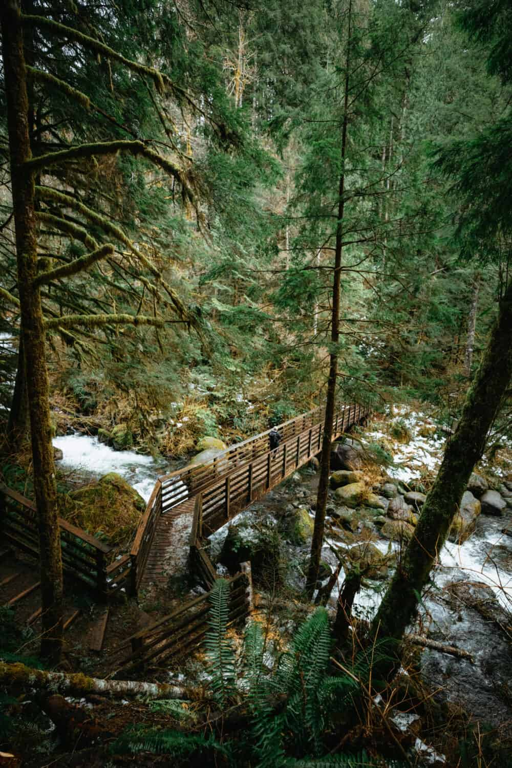 Wallace Falls Hike Wooden Bridge in Washington - TheMandagies.com