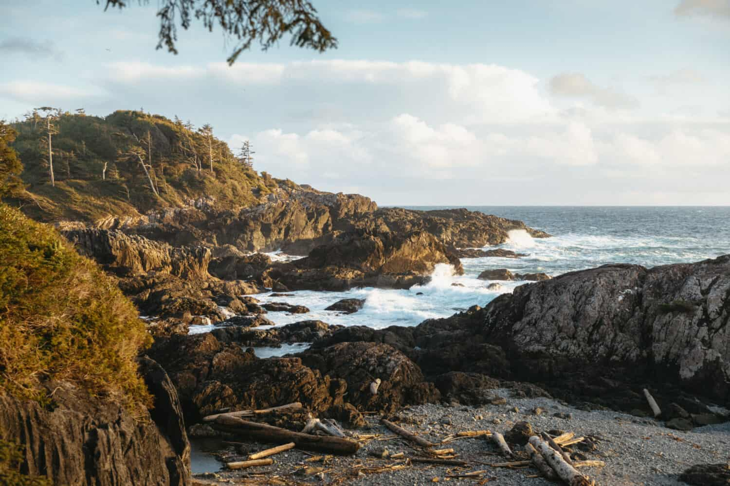 Wild Pacific Trail near Tofino, BC