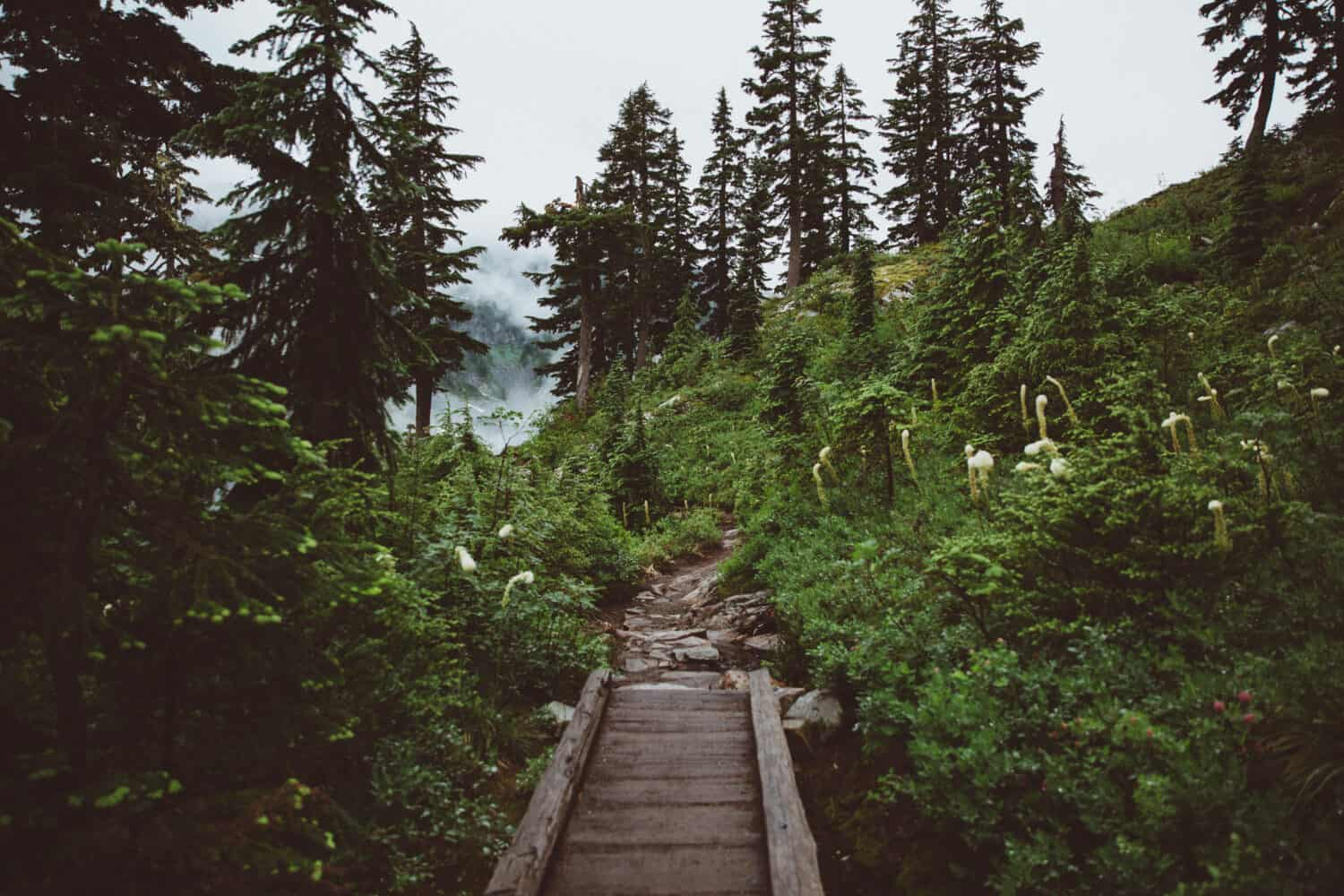 Snow Lake Trail - Seattle Hiking - TheMandagies.com