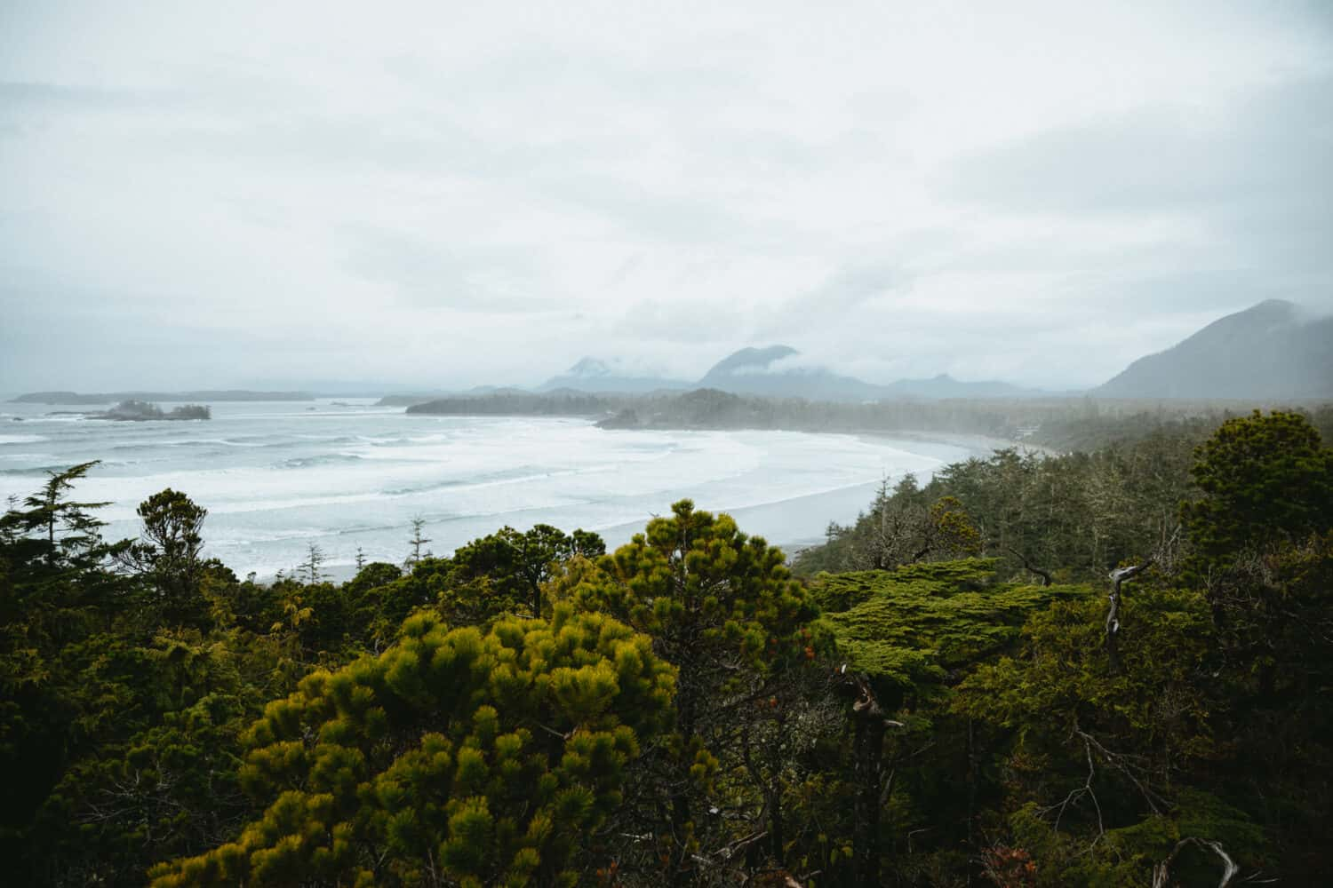 Cox Bay Lookout Trail - View From The Top