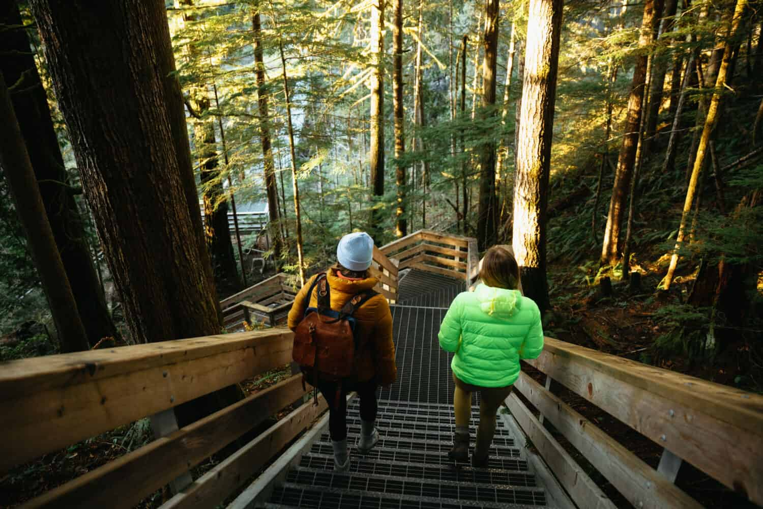 Visit Elk Falls Provincial Park - What To Do Campbell River - TheMandagies.com