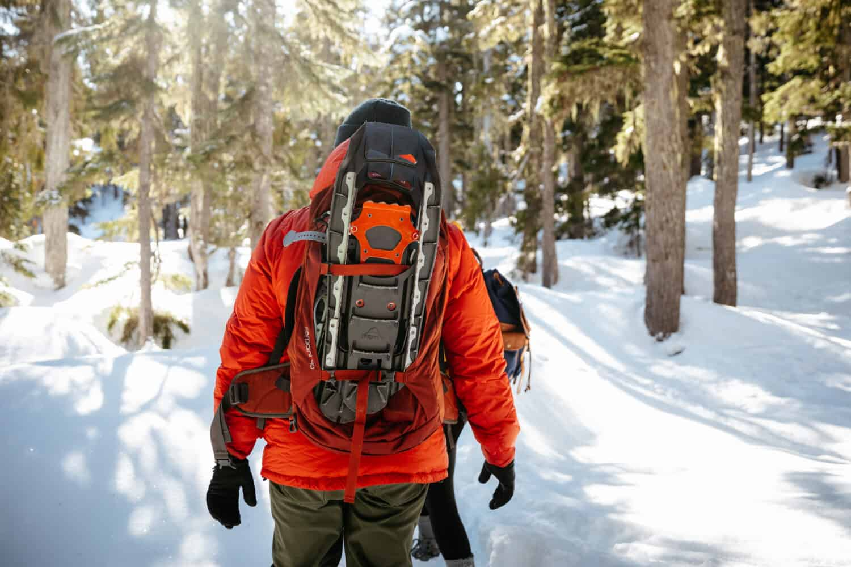 Snowshoeing - Mount Washington - Strathcona Provincial Park - TheMandagies.com