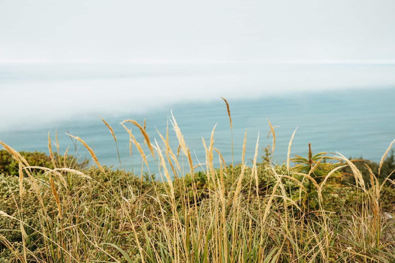 Cape Lookout Oregon Coast Hiking Trails