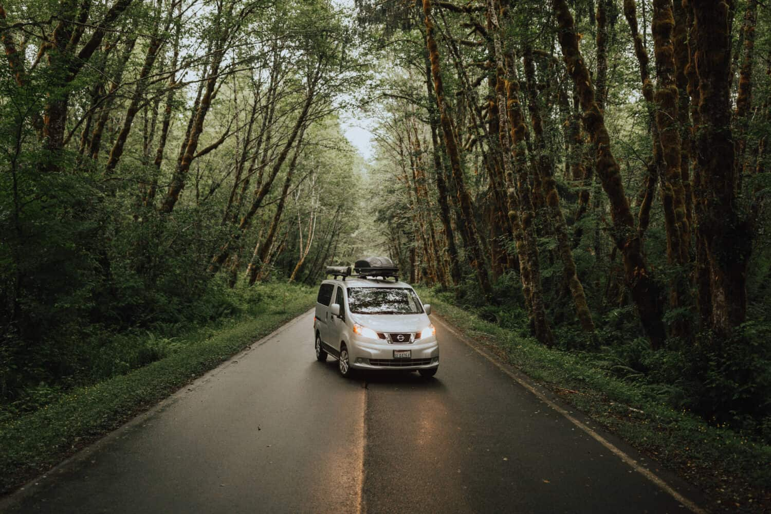 Getting Around Olympic National Park - Van in Rainforest - TheMandagies.com