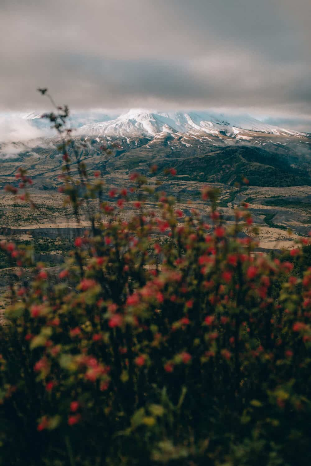 Mount St Helens - Best Places To See In Washington - TheMandagies.com