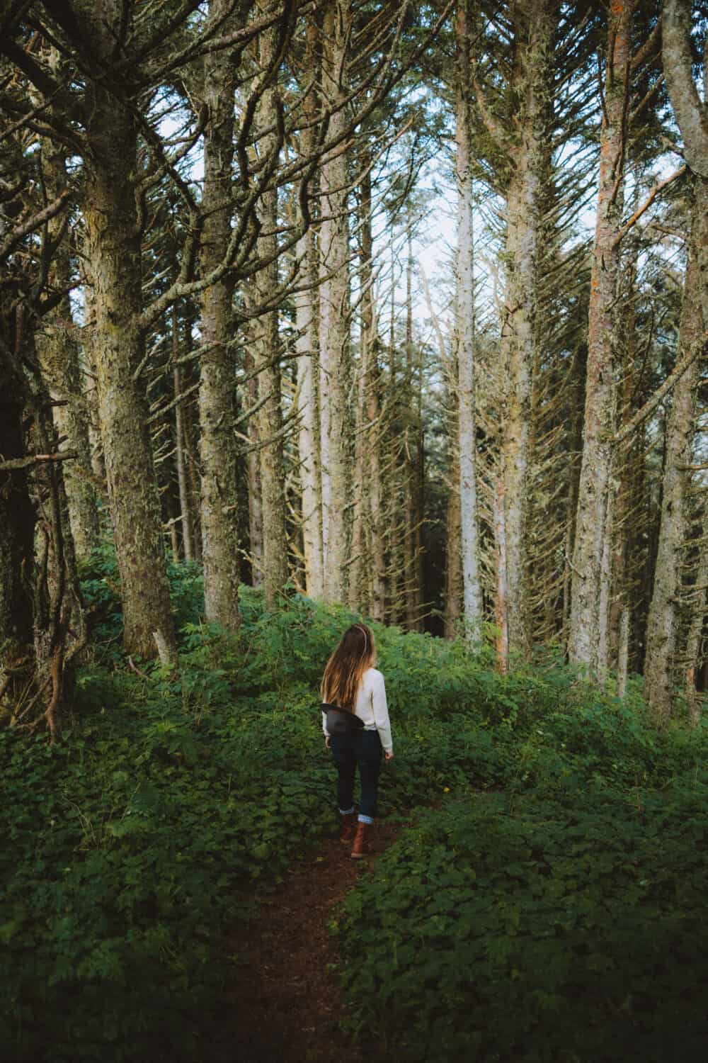 Nearby Hobbit Trail -Hikes in Oregon Coast