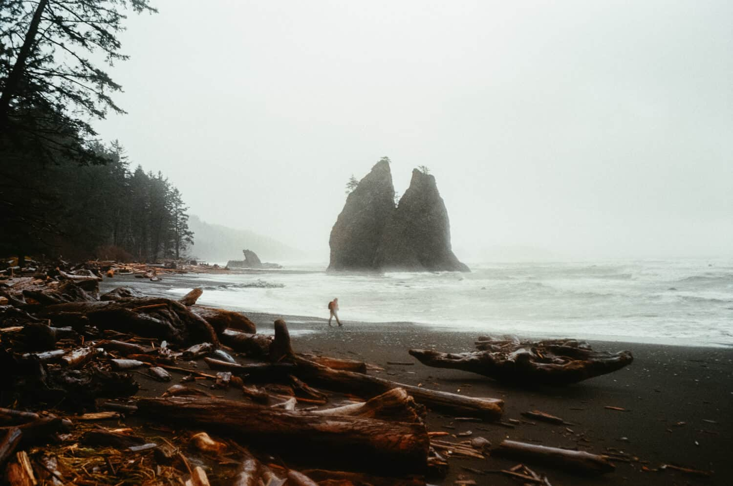 Rialto Beach Trail with Leica M6 - TheMandagies.com