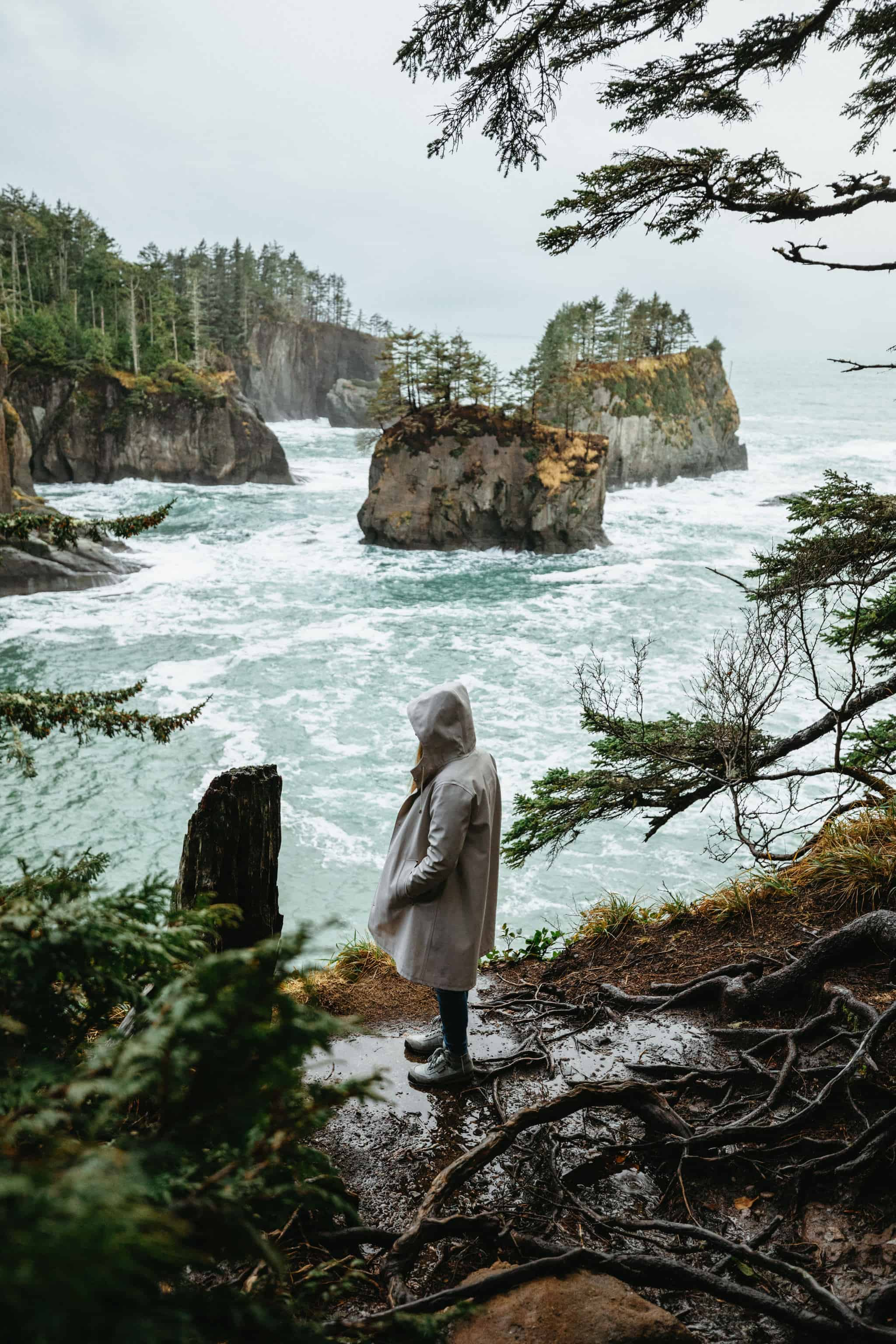 Plan a trip to the Pacific Northwest - Cape Flattery