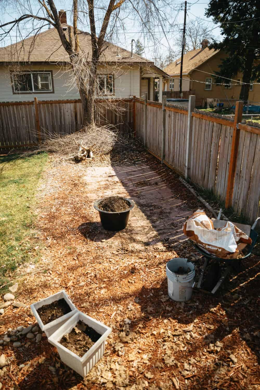 Backyard Fire Pit Before Photos