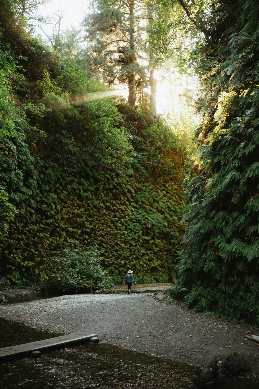 Emily Mandagie in Fern Canyon Trail, Redwoods California