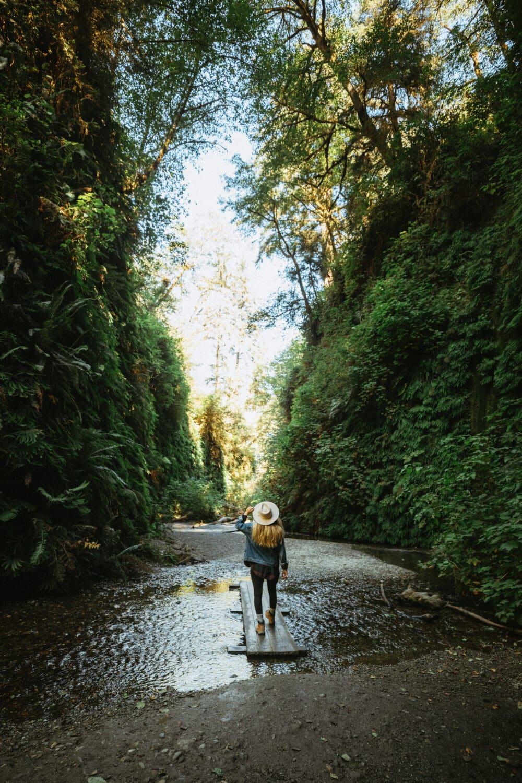 Emily Mandagie exploring Fern Canyon in California