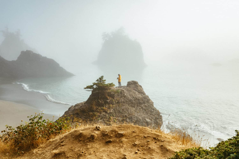 Samuel H Boardman State Park Attractions - Oregon Coast