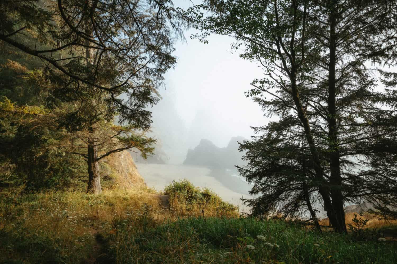 Samuel H Boardman Scenic Corridor, Oregon Coast