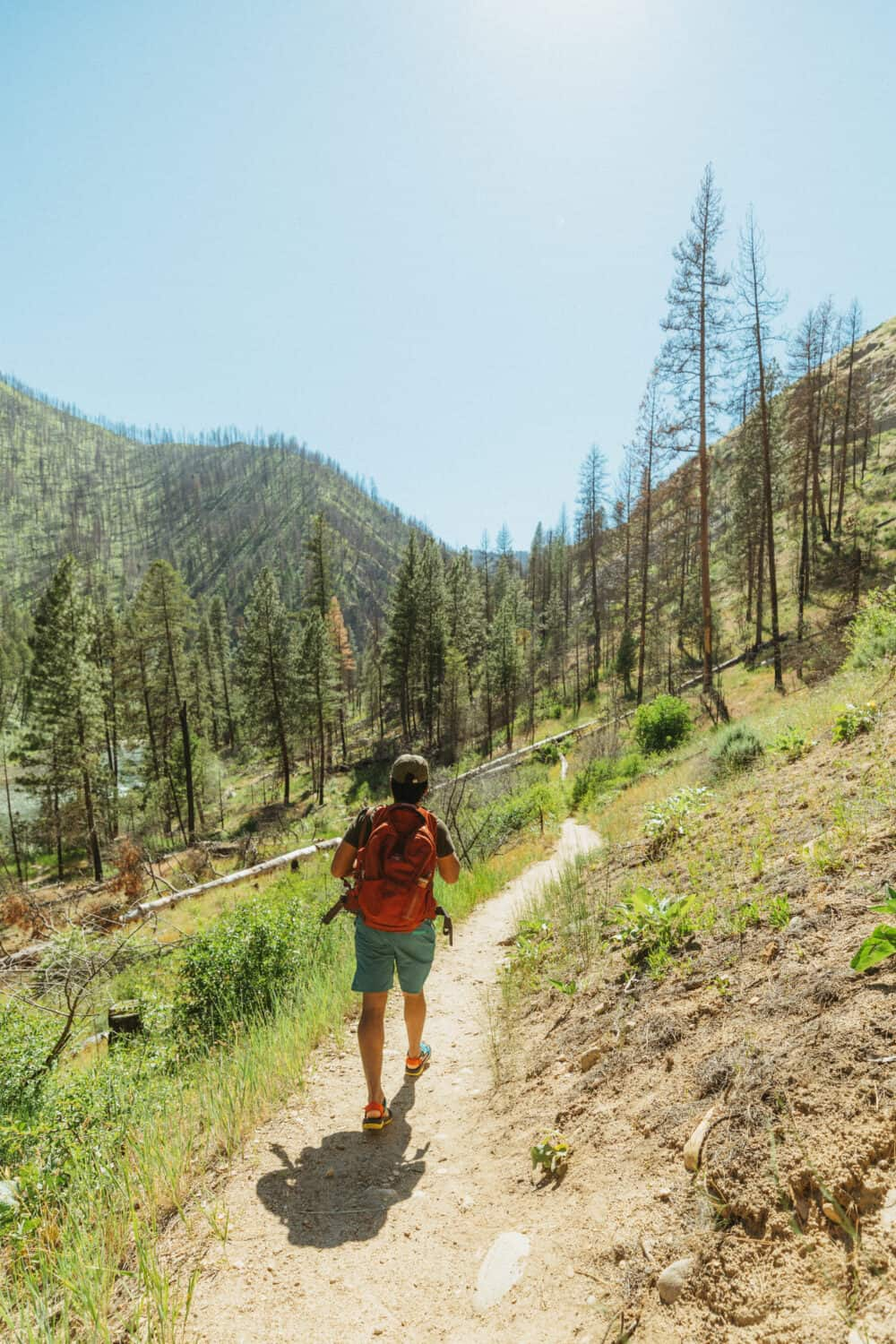 Pine Flats Hot Spings Trail