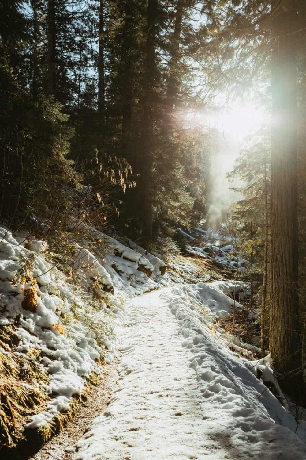 The Trail to Jerry Johnson Hotsprings