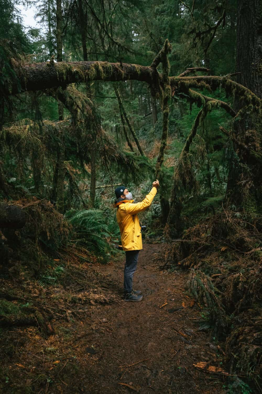 Berty Mandagie exploring the Pacific Northwest forest