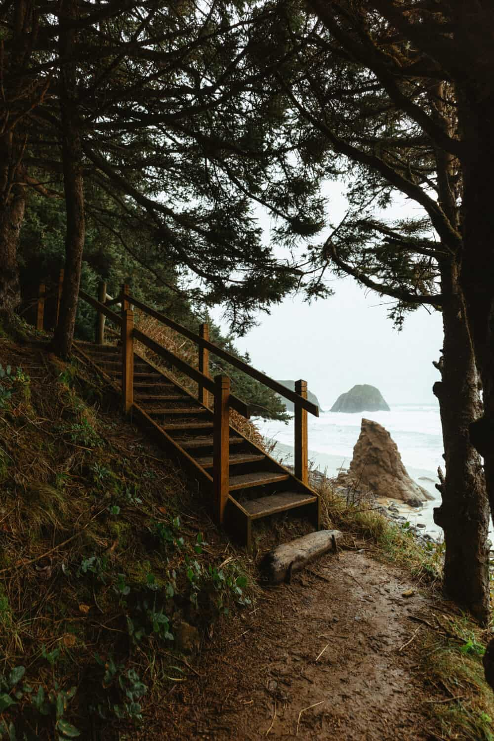 Wooden stairs leading down to Crescent Beach