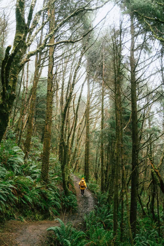 Hikes Near Cannon Beach