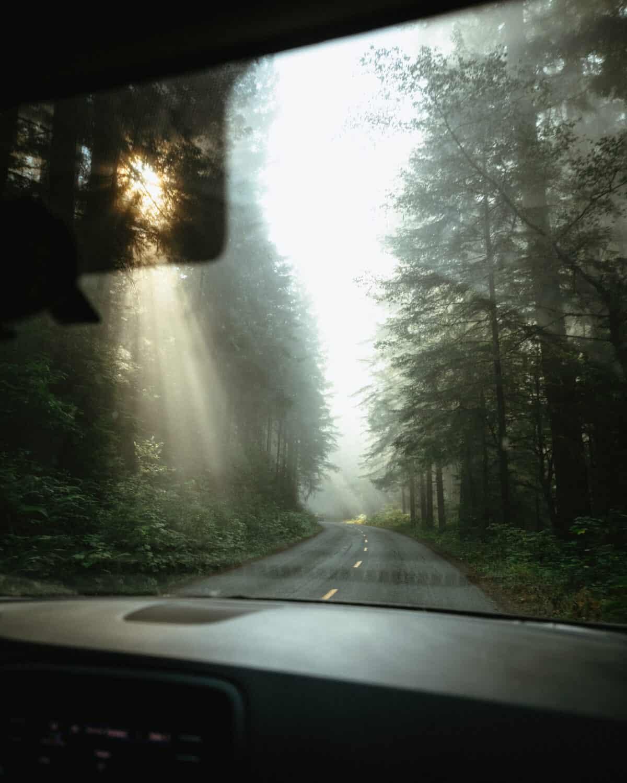 Driving on the Oregon Coast