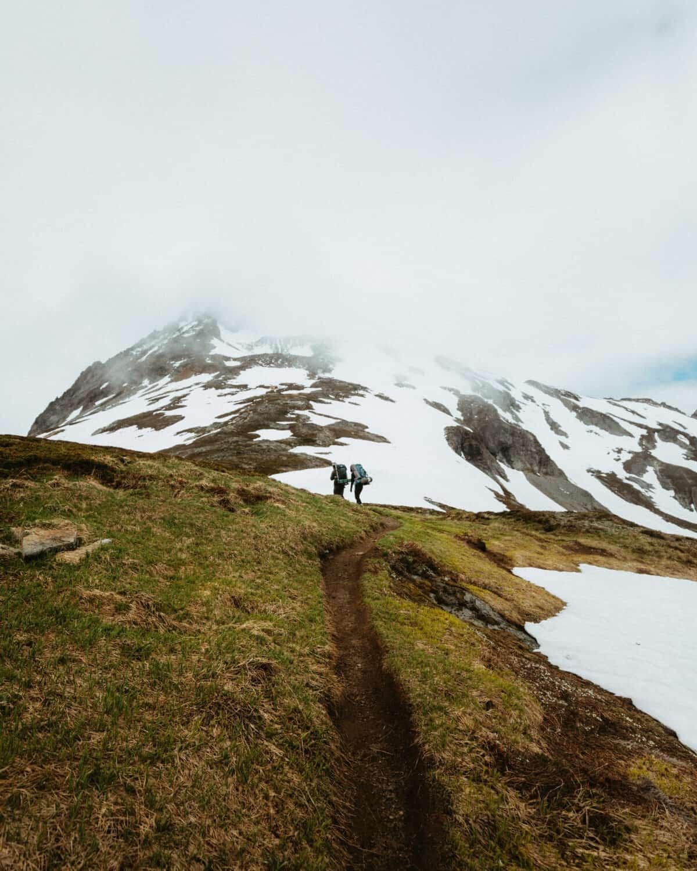 Hiking through an alpine heather meadow