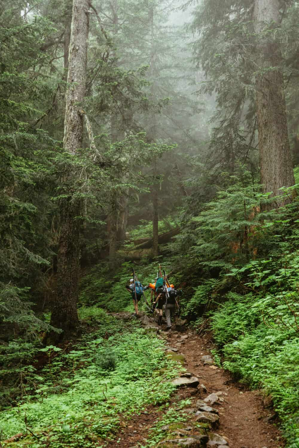 Hiking up Cascade Pass Trail in North Cascades National Park in Washington
