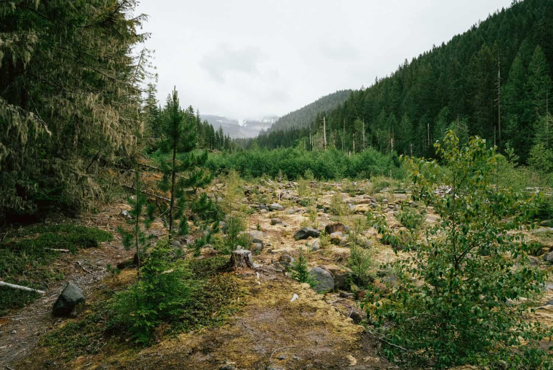 Cloudy views of Mount Hood along the Ramona Falls hike in Oregon