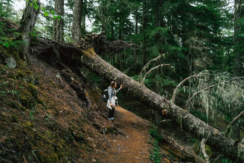 Emily Mandagie on Ramona Falls Hike