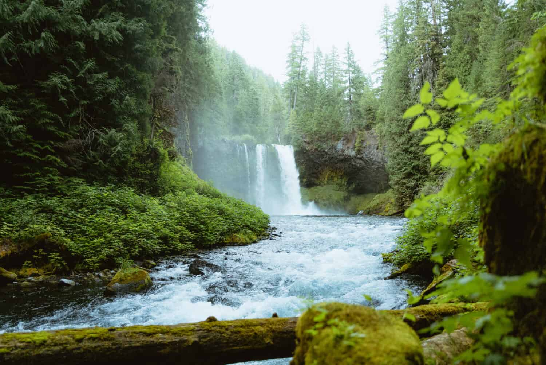 Koosah Falls in Oregon