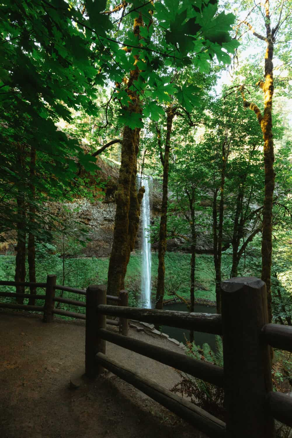 On the Trail of Ten Falls - Silver Falls State Park